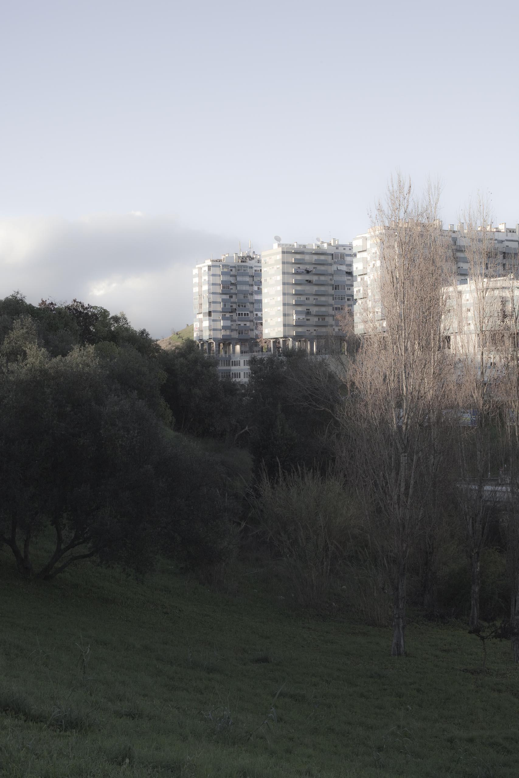 13_MG_1291
